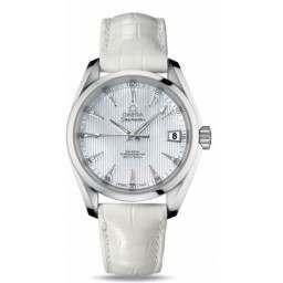 Omega Seamaster Aqua Terra Mid Size Chronometer 231.13.39.21.55.001