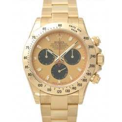 Rolex Cosmograph Daytona champagne/black indexes Oyster 116528