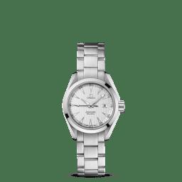 Omega Seamaster Aqua Terra - 231.10.30.61.02.001